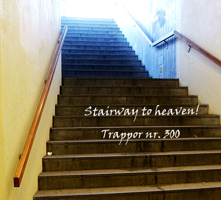 300_trappor