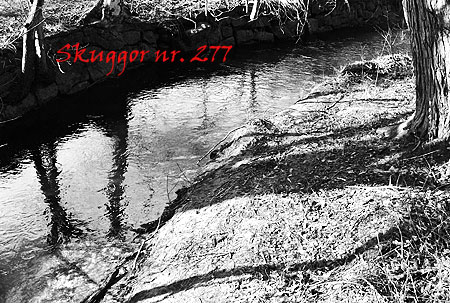 277_skuggor