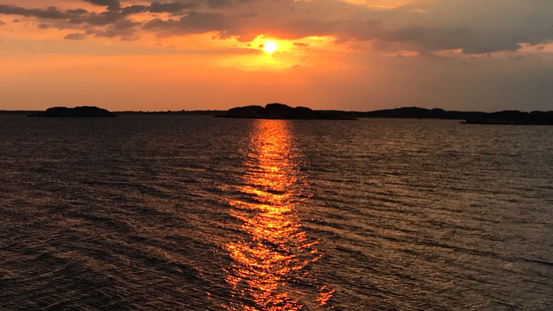 bajspåsar solnedgång bastevik