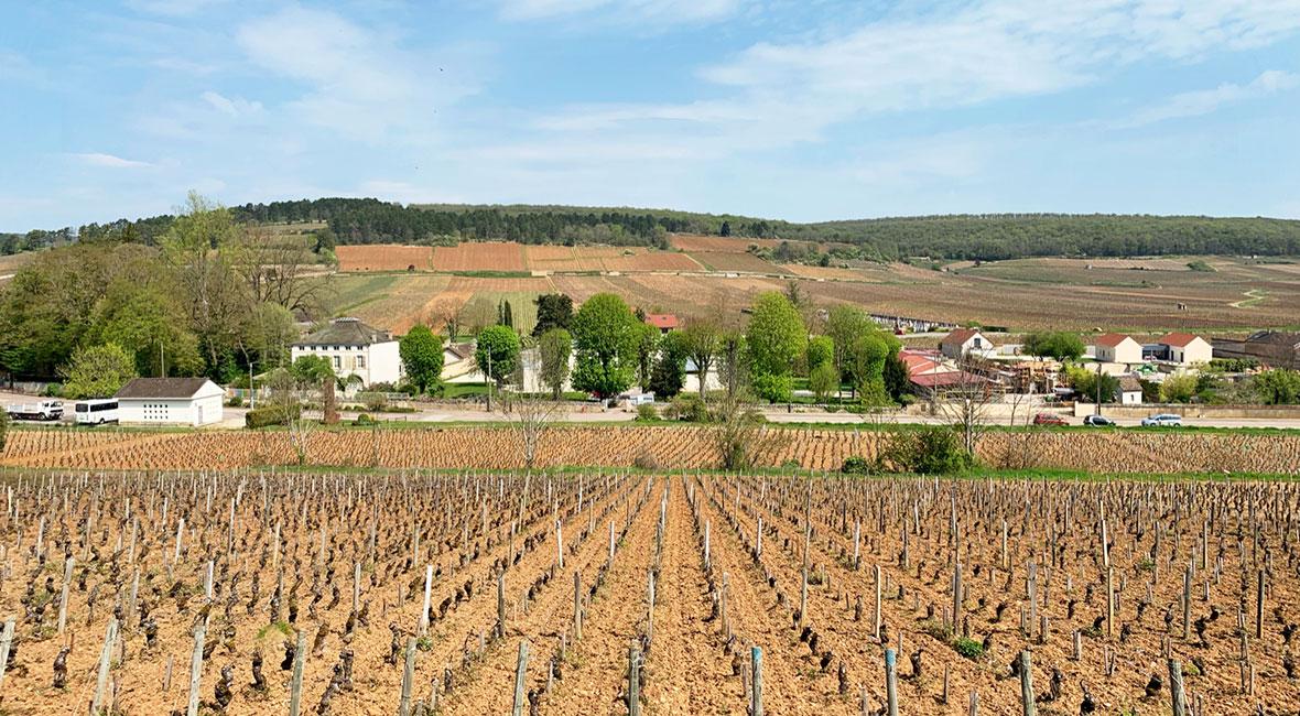 En långhelg i Savigny-les-Beaune