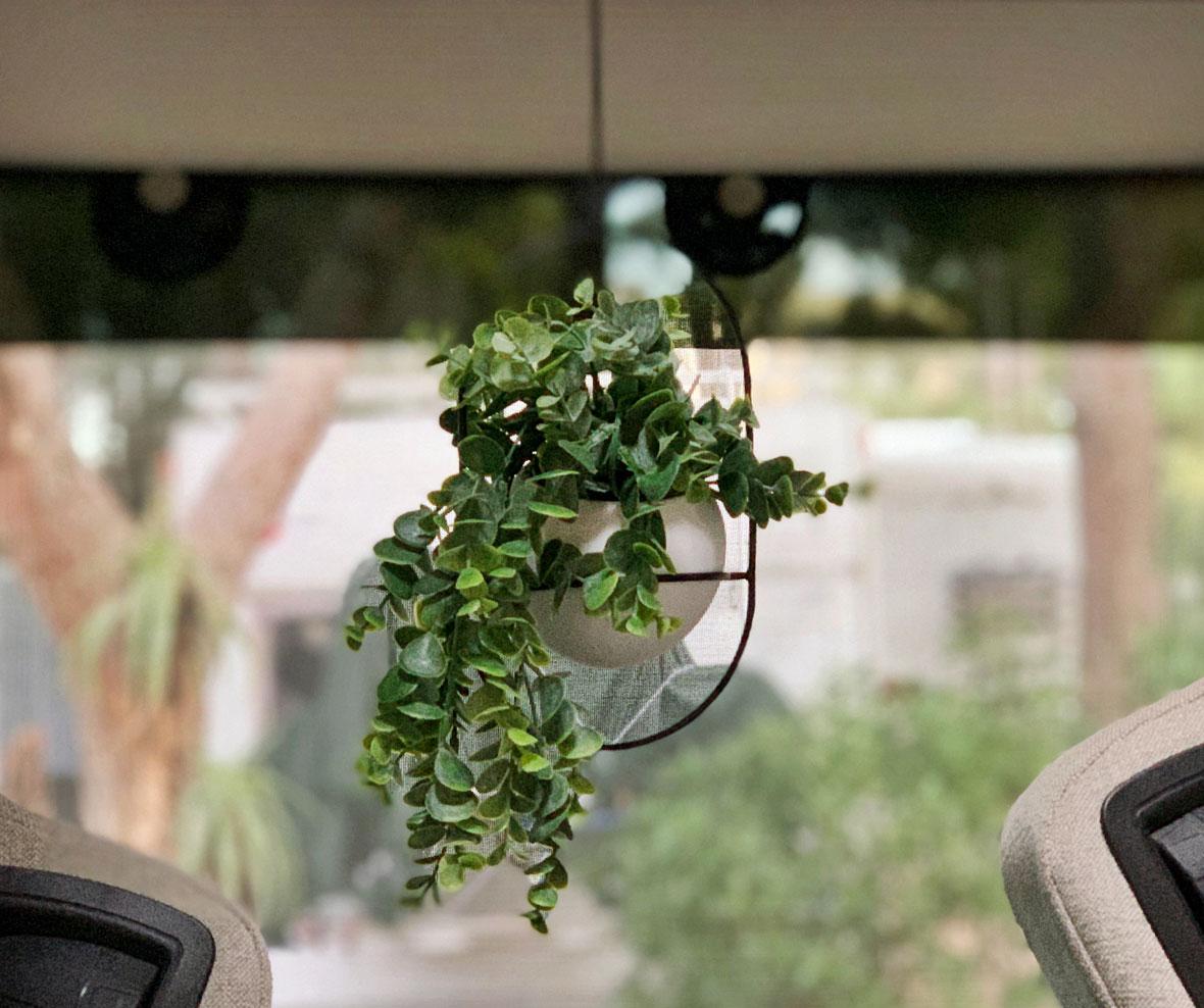 kruka med växt
