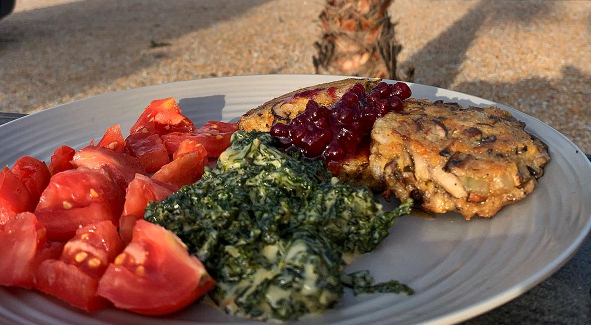 laga mat utomhus
