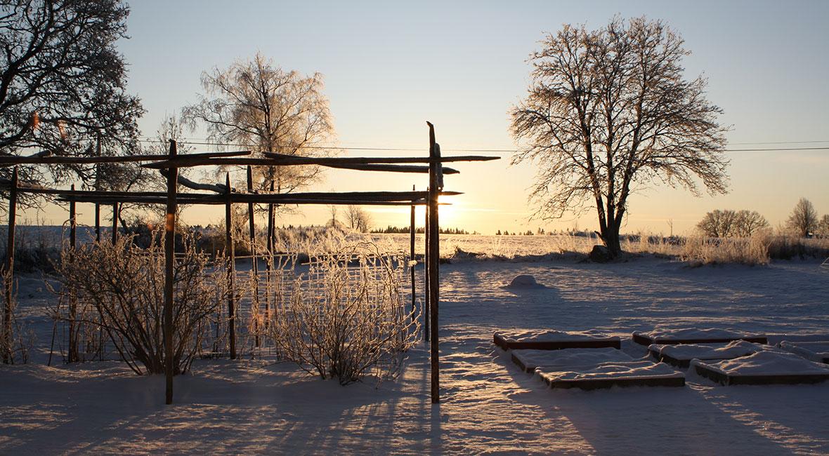 Om vi måste stanna i Sverige i vinter