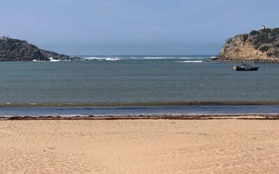 Leirias kust är inte för oss