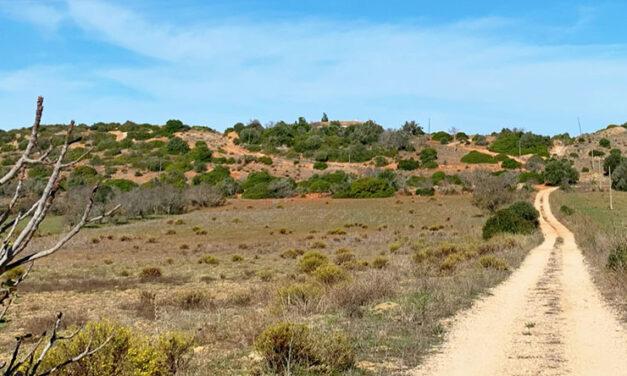 Algarve är inte struket från listan
