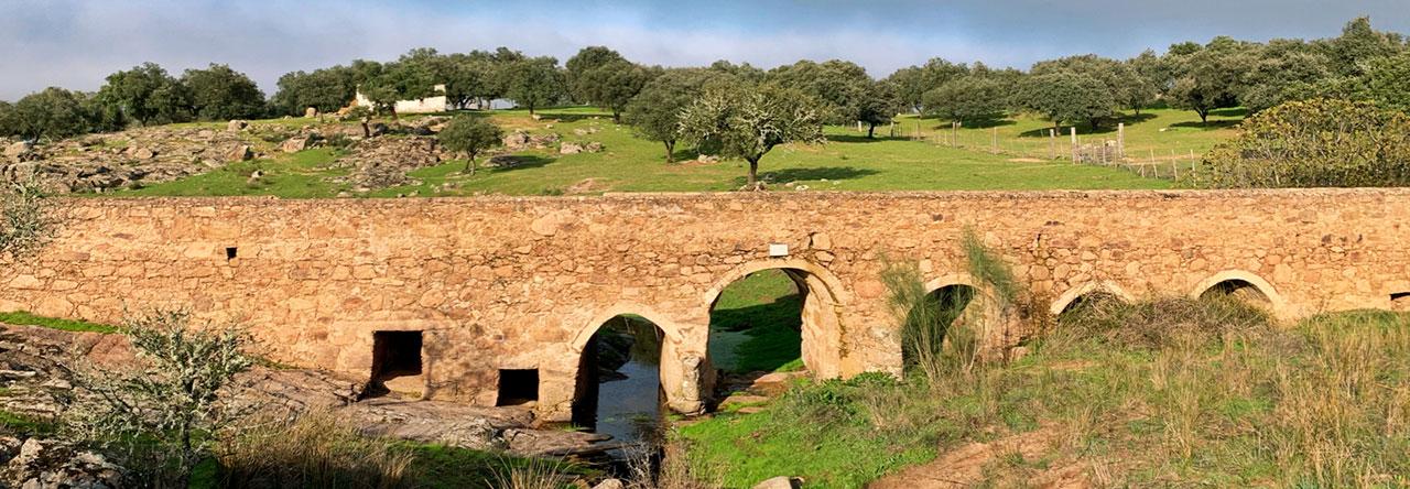 Mäklare i Portugal