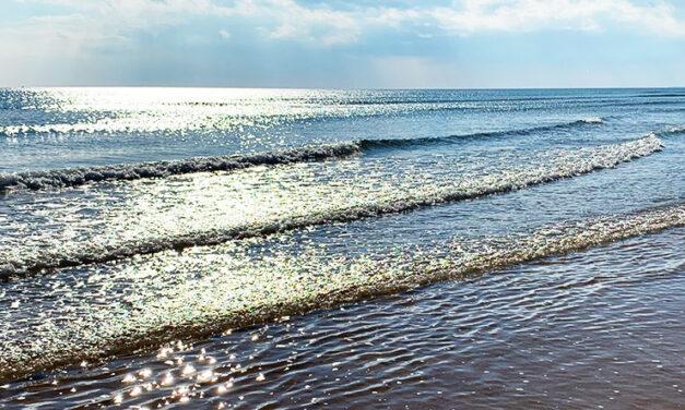 Drömmen om havsnära väcktes igen