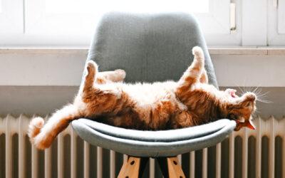 Beslut om varmvatten & värme i huset