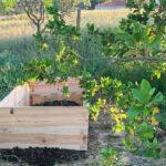 Projekt: Upphöjda odlingsbäddar